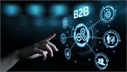 Are you a B2B Company?